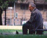An old man sitting feeding the pigeons